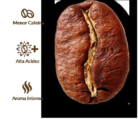Cruzeiro café grano arábica