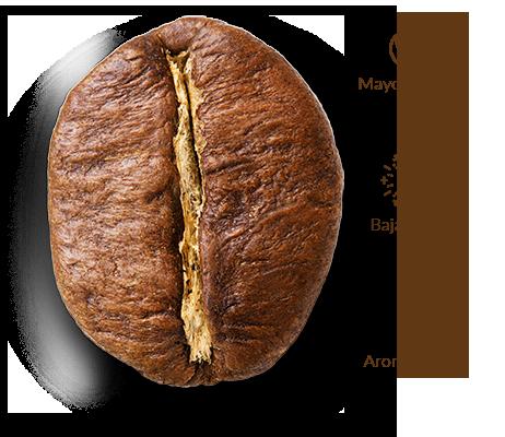 Cruzeiro café grano robusta
