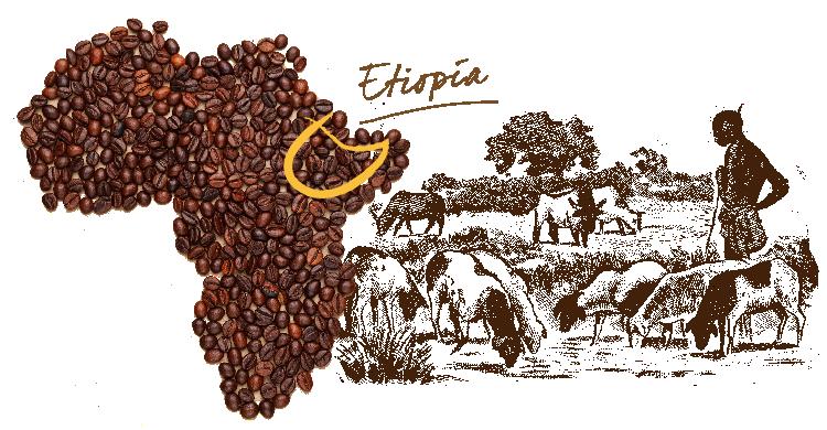 Cruzeiro Africa café Etiopía